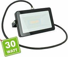 LED-Flutlicht 30W Schwarz Outdoor IP65 |