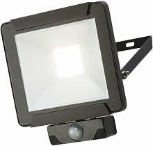 LED-Flutlicht Bita