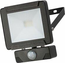 LED-Flutlicht Cutter