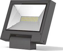 LED Flutlicht Delta