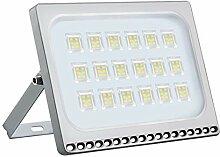 LED Flutlicht Strahler 100W Außen - Fairyland