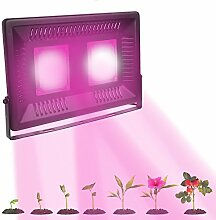 LED Grow Light Full Spectrum COB Lampe für Gewächshaus Zimmerpflanzen Flower Garden in Lampen Wide Area Deckung LEDs 50 W 100 W wasserfest IP67 Indoor Outdoor Pflanze Lichter