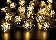 LED Lichterkette Blumen 20er klar - für Dekorationen aller Ar