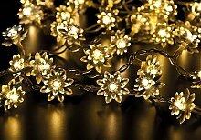 LED Lichterkette Blumen 40er klar - für