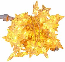 Led Lichterkette Weihnachten Stern 6,5 m 50 LED