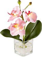 LED Orchidee (1er-Pack), rosa