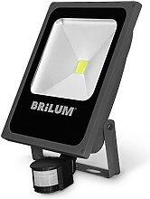 LED Outdoor Strahler mit Sensor LED/50W/230V