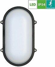 LED Oval Aussenleuchte mit Bewegungsmelder,