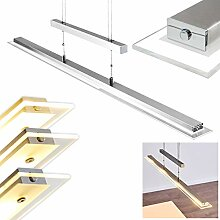 LED Pendelleuchte Hoting aus Nickel matt – LED