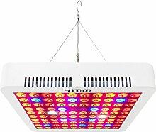 LED Pflanzenlampe 300W,Sunpion Zimmerpflanzen Wachstumslampe Vollspektrum LED Grow Lampe Pflanzenlicht für Treibhaus Zimmerpflanzen Hydrokultur Gemüse und Blumen (300W Type 2)