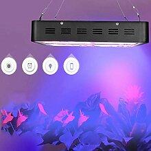 LED-Pflanzenlampe für Pflanzen, Blumen, 600 W,
