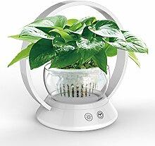 LED-Pflanzenlampe mit Blumentöpfe  MaiMai Touch Control Lampe für Zimmerpflanzen Hydrokultur Gewächshaus Garten-Computer Schreibtisch Büro Aufgabe Beleuchtung USB Nachttisch Lampe