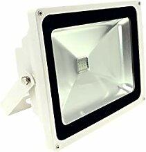 LED-Pflanzenstrahler - Pflanzenbeleuchtung zur
