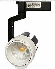 LED-Zoom-Scheinwerfer-Schienenlicht 20W / 30W /