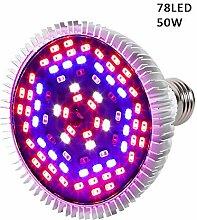 LED zu erziehen Leuchtmittel, Lampe voller