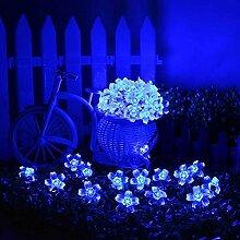 ledmomo 50LED Blumen Lichterkette