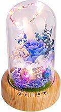 LEDMOMO Für immer Rose und Led-Licht, Bluetooth