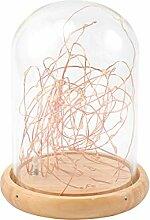 LEDMOMO Solarleuchten Glas Lampe USB LED