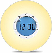 LEHXZJ Wake-Up Light, Lichtwecker mit Sonnenaufgang Simulation, 2 Weckzeiten, FM Radio ,6 Natürlichen Wecktöne, 7 Farben / 10 Helligkeit, Schlummerfunktion,Touchscreen & USB Ladegerä