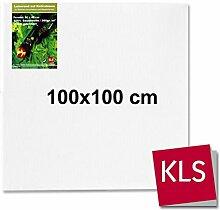 Leinwände auf Keilrahmen, 100x100 cm (XXL)