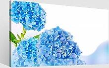 Leinwand 1Tlg XXL Blume Hortensie blau Blumen Garten Blätter Leinwandbild Bilder Bild Wandbild Holz fertig gerahmt 9S789, XL 1Tlg BxH:60cmx40cm