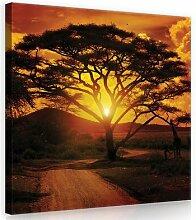 Leinwandbild Afrika in Orange/Gelb/Braun