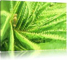 Leinwandbild Aloe Vera Pflanze East Urban Home