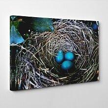 Leinwandbild Birds Nest Duck Egg Blue, Fotodruck