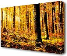 Leinwandbild Deutscher Wald im Herbst East Urban