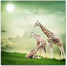 LeinwandbildDrei relaxende Giraffen East Urban