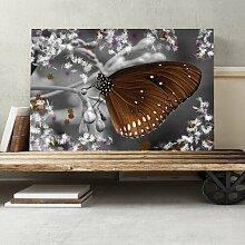 Leinwandbild Flower and Butterfly, Fotodruck Big
