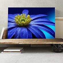 Leinwandbild Flower Blue, Fotodruck Big Box Art