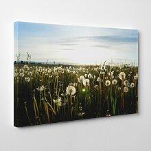 Leinwandbild Flower Dandelion Meadow, Fotodruck