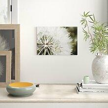 Leinwandbild Flower Dandelion Seeds, Fotodruck Big