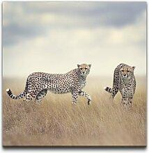 Leinwandbild Geparden in Afrika East Urban Home