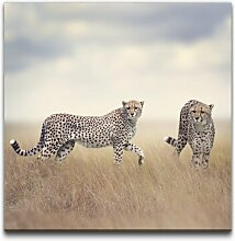 Leinwandbild Geparden in Afrika