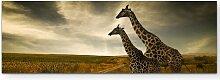LeinwandbildGiraffen in der Savanne