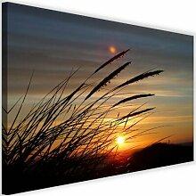 Leinwandbild Gras und Sonnenuntergang