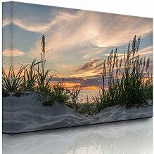 Leinwandbild Grasstrand bei Sonnenuntergang