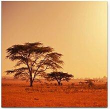 LeinwandbildKöcherbaum in Namibia – Afrika
