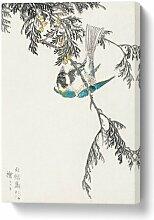 Leinwandbild Kohlmeise auf einer Zypresse von