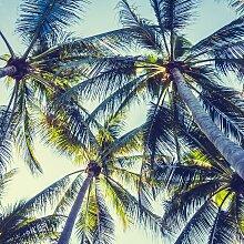 Leinwandbild Miami 50x50 cm bunt Kunstdrucke