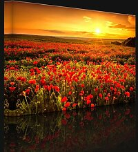 Leinwandbild Mohnblumenfeld in einem traumhaftem