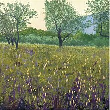 Leinwandbild Olivenbäume Sommerallee Größe: 50