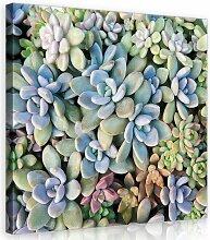 Leinwandbild Pflanze in Violett/Grün/Orange