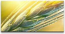 Leinwandbild Pflanze