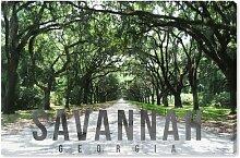 Leinwandbild Savannah Landschaft
