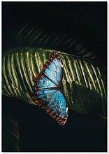 Leinwandbild Schmetterling auf einem Blatt