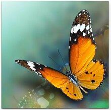 Leinwandbild Schmetterling – Nahaufnahme East