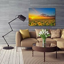 Leinwandbild Sonnenblumen-Landschaft